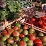 tomato mercato